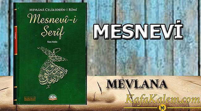 100 Temel Eser Özetleri ve Kitap Yorumları: Mevlana- Mesnevi