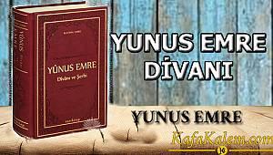 100 Temel Eser Özetleri ve Kitap Yorumları: Yunus Emre Divanı