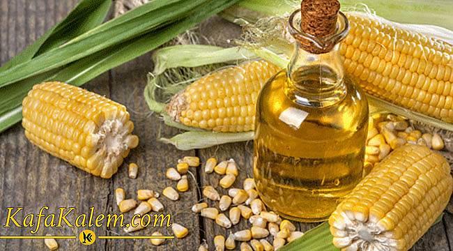 Şifalı Bitkilerden Olan Mısırı Tarihte Nasıl Kullandılar? Mısırın Sağlık İçin Faydaları Nedir?