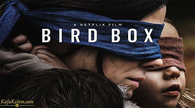 Mayıs ayının en çok izlenen filmi; Bird Box