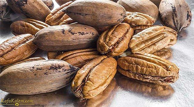 Yüksek besin değerine sahip olan Pikan Cevizi'nin faydaları nelerdir?